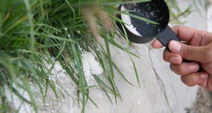 استعمالات الملح في المنزل