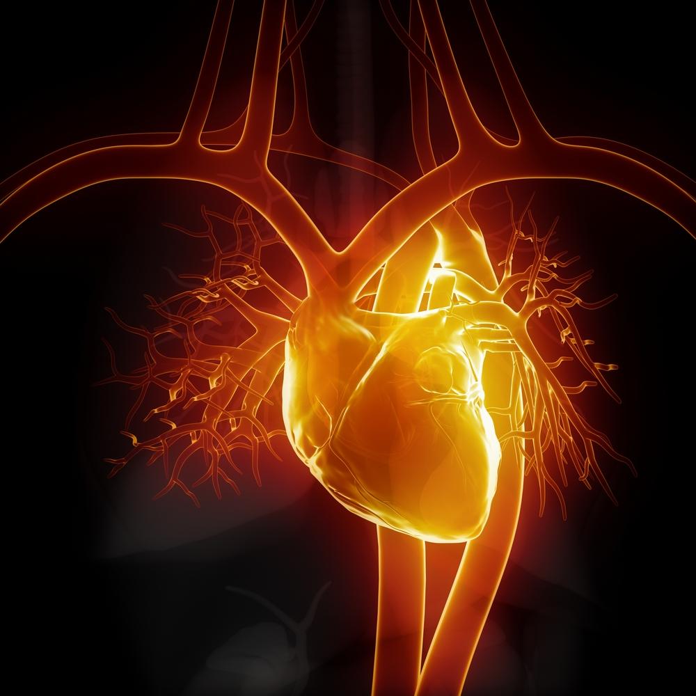 ثقب القلب للكبار