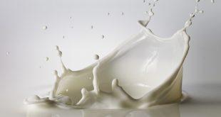 فوائد الحليب للشعر