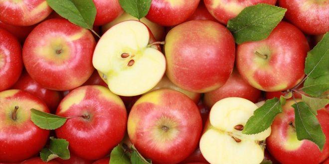 فوائد اكل التفاح على الريق