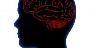 علم النفس الحيوي