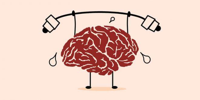 تدريب الدماغ