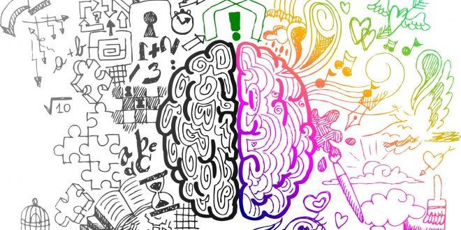 الدماغ الايمن